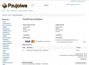 Kreditkartenbetrug - Eingabe-Maske