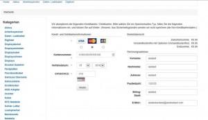 Kreditkartenbetrug - Eingabe-Maske Prüfziffer