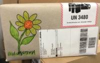Kundenwunsch Sonnenblume Paket